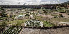 Sistema de Irrigação nas Hortas Termais / Cíclica + Cavaa Arquitectes