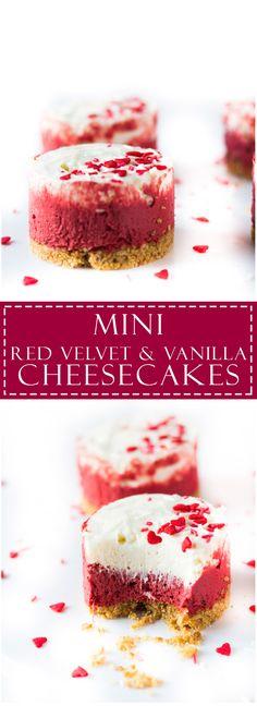 Mini Red Velvet and Vanilla Cheesecakes | Marsha's Baking Addiction