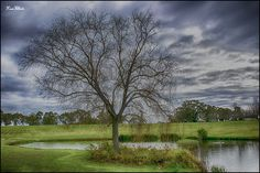 Sandalford Estate, Perth