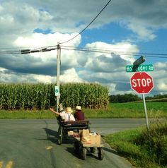 10 Interesting Amish Foods http://www.lydiaglick.com/10-interesting-amish-foods/ via @justina_dee