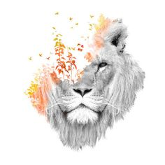 print on metal Animals lion nature surreal photo manipulation double exposure cat dream fantasy watercolor light forest Image Deco, Surreal Photos, Lion Print, Future Tattoos, Double Exposure, Photo Manipulation, Cool Tattoos, Tatoos, Epic Tattoo
