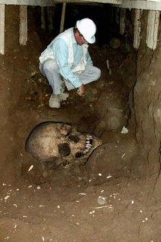 More on the giant skulls...Hundreds of discoveries were found in the U.S, only for it to be ignored or taken away by the Smithsonian, never to be seen again...Click for articles