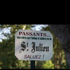 Saint julien (medoc - vin de bordeaux)