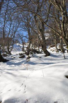 Valles Pasiegos #Cantabria #Spain Costa, Snow And Ice, Shadows, Sci Fi, Humor, Outdoor, Fotografia, Art, Tourism