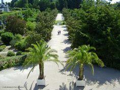 Le Jardin Botanique - Tours