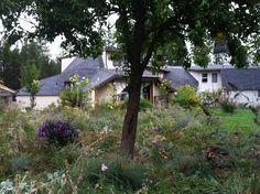 Domes garden early autumn