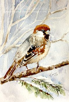 Sunday Watercolors - House Sparrow | Karin @ Peppermint Patty's Papercraft