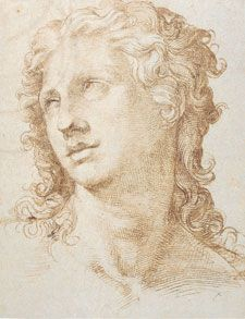 Drawing by Michelangelo                                                                                                                                                                                 More