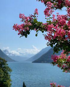 Swiss Travel, Lugano, Switzerland, Mountains, Nature, Beautiful, Naturaleza, Nature Illustration, Off Grid