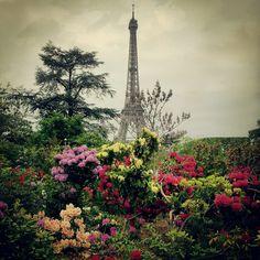 Spring in Old Paris