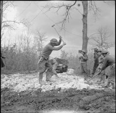 BRITISH ARMY ITALY 1944 (NA 13202) Object description Royal Engineers building a road in the Anzio bridgehead, 21 March 1944.