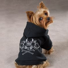 Zack & Zoey Black Cross Bone Hoodie.  Just like the people hoodies, has a pocket across the back and a hood for the head. This comes in black or raspberry (pink)