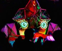 Nightime stage forest frequencies 2013