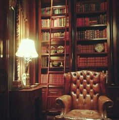 Timeless peaceful setting... the library.