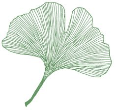 Ginkgo leaf (This is a stamp, but I would so get something like this as a tattoo--I <3 the symbolism of G. biloba)