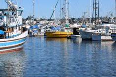 hard working vessels in Fisherman's Terminal in Seattle--all over the city you will see a wide array of fishing/crabbing boats, container ships, pleasure boats, and cruise ships. for more info follow link. #seattlewashington #glutenfree  #seattletravel  #discoveryparkseattle  #kayak  #seattlerestaurants