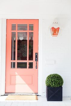 coral peach door, white wall, topiary plant in modern planter, pantone blooming dahlia, salmon pink, coral peach