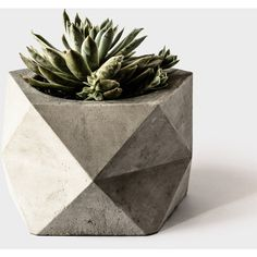 Large Concrete Geometric Planter 'PENTOID' for Succulent, Cactus... (€53) ❤ liked on Polyvore featuring home, home decor, succulent centerpieces, succulent planter, concrete planters, handmade home decor and geometric home decor