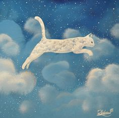 cats and clouds - awesome ;)