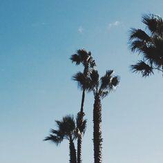 CALIFORNIA SKY  #California