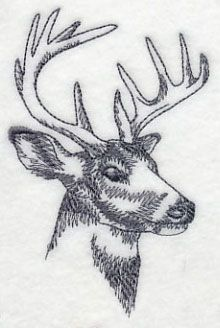 Machine Embroidery Designs at Embroidery Library! - Color Change - K5779