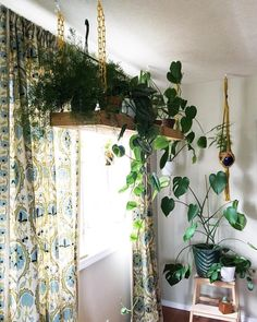 Indoor living wall planter find cool modern eclectic bohemian ways to hang your plants clever bloom . Decor, Hanging Plants, Best Indoor Plants, Vertical Garden Design, Hanging Planters, Indoor Design, Indoor Garden, Eclectic Decor, Hanging Plants Indoor