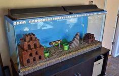 Super Mario Bros. fish tank.... Love it!