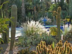 Majorelle Garden, Marrakech, Morocco #gardentourism