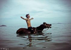 not quite sure how the horse feels about this but I'd venture to say, not thrilled. Horse Water, Baja California, Horse Pictures, What A Wonderful World, Dark Horse, Country Life, Wonders Of The World, Playground, Equestrian