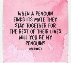 You must find a penguin❣️☺✌🏼