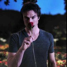 Ian Somerhalder: What Fans Should Know About The Vampire Diaries Star - Celebrities Female Vampire Diaries Wallpaper, Vampire Diaries Quotes, Vampire Diaries Cast, Vampire Diaries The Originals, Damon Salvatore Vampire Diaries, Ian Somerhalder Vampire Diaries, Nikki Reed, The Salvatore Brothers, Damon And Stefan