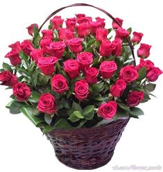 Things to Know about Deals on Valentine's Day Flowers Online Large Flower Arrangements, Contemporary Flower Arrangements, Beautiful Rose Flowers, Amazing Flowers, Rose Flower Pictures, Send Flowers Online, Rose Flower Wallpaper, Happy Birthday Flower, Valentines Flowers