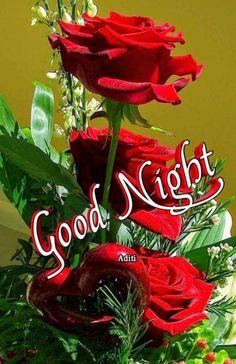 Good Night Cat, Good Night Flowers, Beautiful Good Night Images, Good Morning Roses, Good Night Love Images, Good Night Prayer, Cute Good Night, Good Night Blessings, Good Night Sweet Dreams