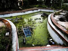 Abandoned Pool at Colony Plaza in FL. You could not PAY me to go in there...