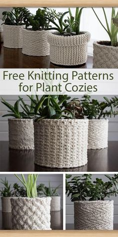 Best 11 Free Knitting Patterns for Plant Cozies – 5 different patterns for covers for plant containers. The patterns include: Lattice Cable, Jute, Herringbone, Garter Stitch, Stockinette. Designed by Brome Fields. The designs use from 60 – 140 yards – Knitting Stitches, Knitting Patterns Free, Knit Patterns, Free Knitting, Free Pattern, Knitting Ideas, Easy Knitting Projects, Holiday Crochet Patterns, Easy Patterns