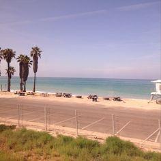 Headed back to #LA on the #amtrak #pacific #surfliner #sunday #sundayfunday #beach #palmtrees #lifeguardstand #nofilter #train #sandiego #summer #pacificsurfliner #pier #sanclemente #surf #sand #ocean
