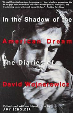In the Shadow of the American Dream : The Diaries of David Wojnarowicz  by Amy Scholder