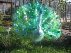 Peacock from plastic bottles. Gloucestershire Resource Centrehttp://www.grcltd.org/scrapstore/