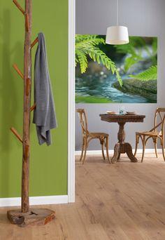 Grüne Farnblätter über fließendem Wasser – ein Motiv zum Entspannen. / 1-611 Along the River