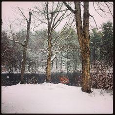 #FranklinMA #Massachusetts #SnowMA