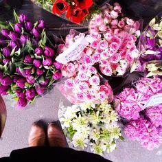 Flowers on my Instagram : http://instagram.com/melicot/