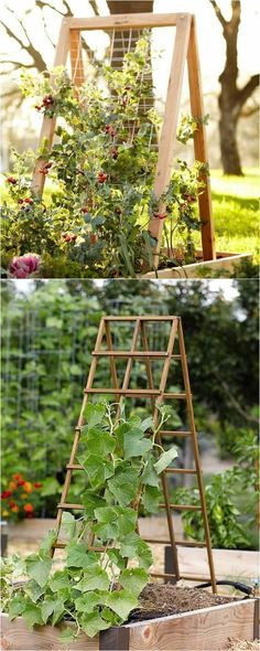 21 beautiful and DIY friendly garden trellis and structures, such as cucumber trellis, bean teepees, grape tunnels, pergolas, screens, etc. Create productive and enchanting garden spaces with trellis planters, panels, and more! - A Piece Of Rainbow #gardentrellis