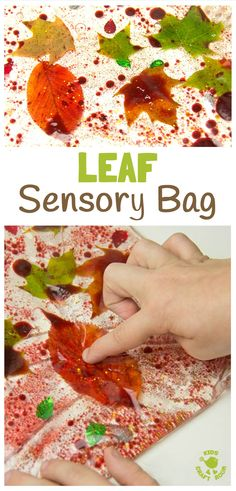 LEAF SENSORY BAGS - a fantastic mess free Autumn sensory play activity for kids. Children will love to explore this sparkly oil, water and leaf Fall activity that engages the senses.