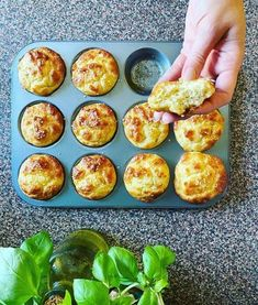 Muffins, Recipes From Heaven, Paleo, Free Food, Healthy Snacks, Breakfast Recipes, Good Food, Food And Drink, Sweets