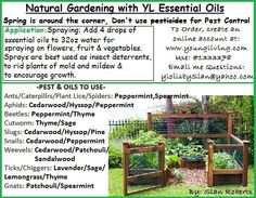 Natural Gardening with YL Essential Oils
