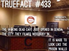 Another quick fact: They opened this café right down the street from the actual Woodbury Café that TWD was filmed in
