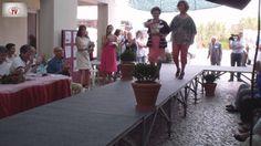 Desfile de Moda Sénior CASCUZ 2014 - V Desfile de Moda Sénior