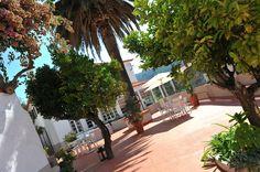 Boutique Hotel Quinta da Palmeira, Cerdeira, Central Portugal