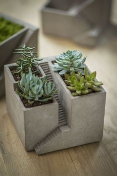 "Cement House Architectural Planter Create your own micro landscape for succulents, wheat grass and more -- or fill with sand and stones for a desktop zen garden. 6.75""square x 5.25"" Listing is for planter in first photo (plants not included) - see our other listings for planter variati..."