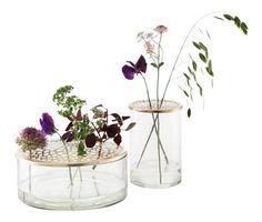 »Noget, jeg bare elsker ved de her vaser, er, at de lader alle blomster komme til deres ret,« siger Louise Dorph. Vaserne er især designet til at lade hverdagens små have- og markblomster komme til ære. Samtidig kan de uden vand bruges til al mulig anden opbevaring, f.eks. vatrondeller på badeværelset. Vaserne hedder Kassandra (den høje) og Kathinka (den største) og koster henholdsvis 238 kr. og 308 kr.